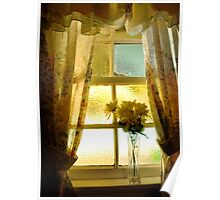 the window sill.. Poster