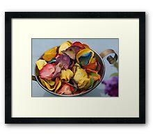 Dried coloured roses  Framed Print