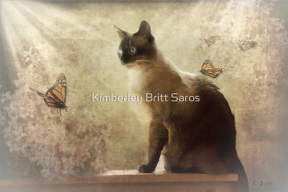 Cat Magic by KBritt