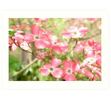 Pink Spring Flowers In A Blur Of Greenery Art Print