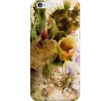 Desert Sunset iPhone Case/Skin