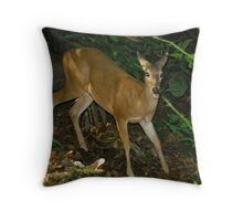 Deer in the park Throw Pillow