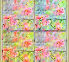 Open~Windowed~Hearts... by LindaR