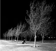 Ridgecrest Park in December by Corri Gryting Gutzman
