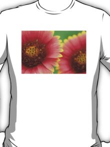 Indian Blanket T-Shirt