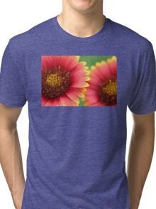 Indian Blanket Tri-blend T-Shirt
