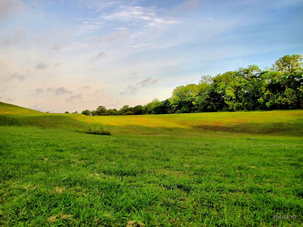 God's Green Grass by aprilann