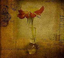 Jenn's Flower by Rene Hales