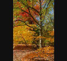 Autumn Colors. Unisex T-Shirt