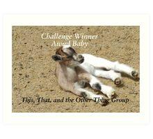 Challenge Winner - Aww Baby Art Print