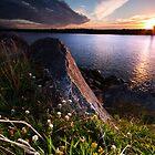Buller River Sunset by Francis Carmine