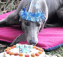 Happy Birthday by GreyhoundSN