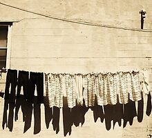 Clothes line silhouettes by James  Booth