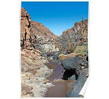 Guatin - Atacama Desert - Chile Poster