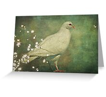 The Magical White Dove Greeting Card