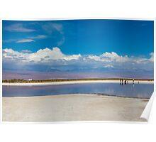 Cejar Pond - Atacama Desert - Chile Poster