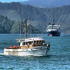 Te Kahurangi and the Ferry. ( 1 ) by Larry Lingard-Davis