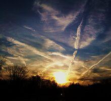 THE MORNING SKY  by JoAnnHayden