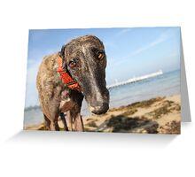 Beach Bum Hollie Greeting Card