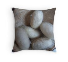 cocoon-successful life Throw Pillow