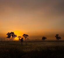 Australia by Kathryn Steinhardt