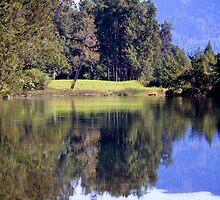 Bellinger River by Carolyn Boyden