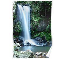 Curtis Falls - Mt Tamborine Poster