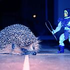 Skeletor & hedgehog by garigots