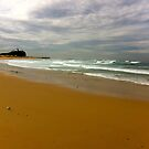 Newcastle. Nobby's Beach. Australia by allabouther