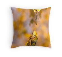 Silvereye - Central Otago Throw Pillow
