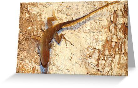 Lizard and matching bark by ♥⊱ B. Randi Bailey
