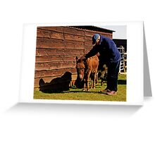 Stroking Donkey in Sanctuary Greeting Card