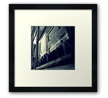 Where Do They All Come From? Framed Print