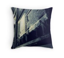 Where Do They All Come From? Throw Pillow