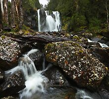 First tier of Hidden Falls - Cradle Mountain by Mark Shean