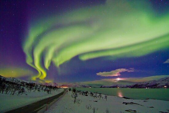 Auroras are everywere by Frank Olsen