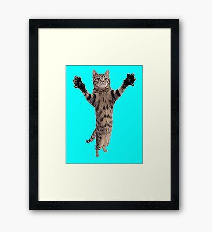 Kitteh Grabs Framed Print
