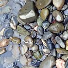 Pebbles on Daning River - iPhone/iPod case by Anthony Woolley