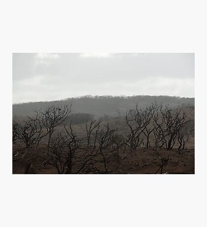 Margaret River Bushfire 2012 Photographic Print