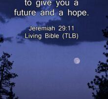 Bible Verse: Jeremiah 29:11 Words of Hope for the Future Sticker
