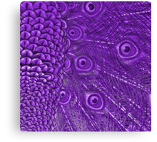 Purple for Little Miss Emily Canvas Print