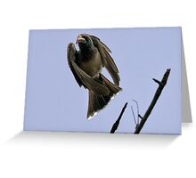 Ugly Birds Can Fly And Look Good ! Greeting Card