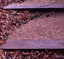 Steps... by garigots