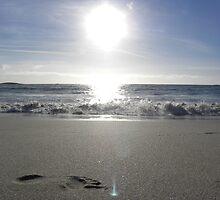 Beach Sunset by Fattom25
