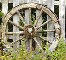Wheel by Fattom25