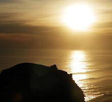 Fleeting Sun by Brandon Roos