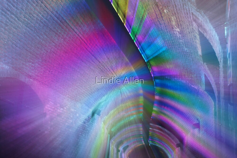 Tunnel vision by Lindie Allen