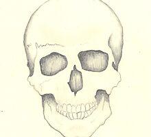 Skull by Johanus Haidner