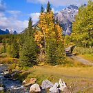 Fall in Banff National Park by Bob and Nancy Kendrick