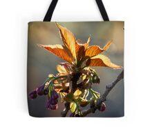Leaf Protector at Sunset Tote Bag